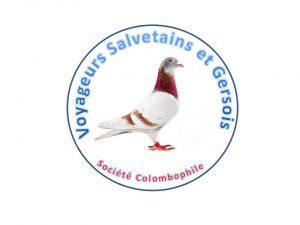logo voyageurs