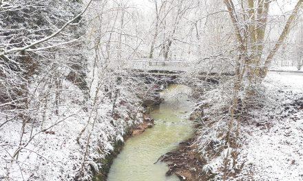 La Salvetat, sous la neige…