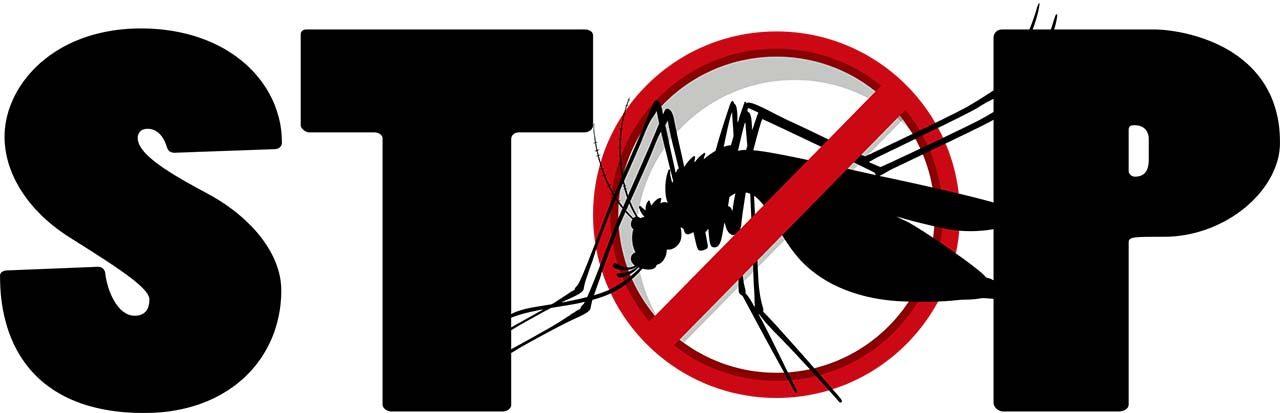 Lutter contre le moustique tigre