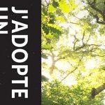 Adoptez un arbre… avec le Conseil Municipal des Jeunes