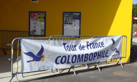 9ème Tour de France colombophile