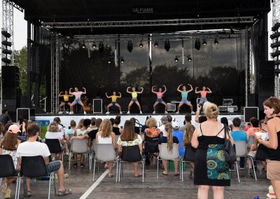 Festival La Salvetat 2019  -  Photo Patrice SORDO